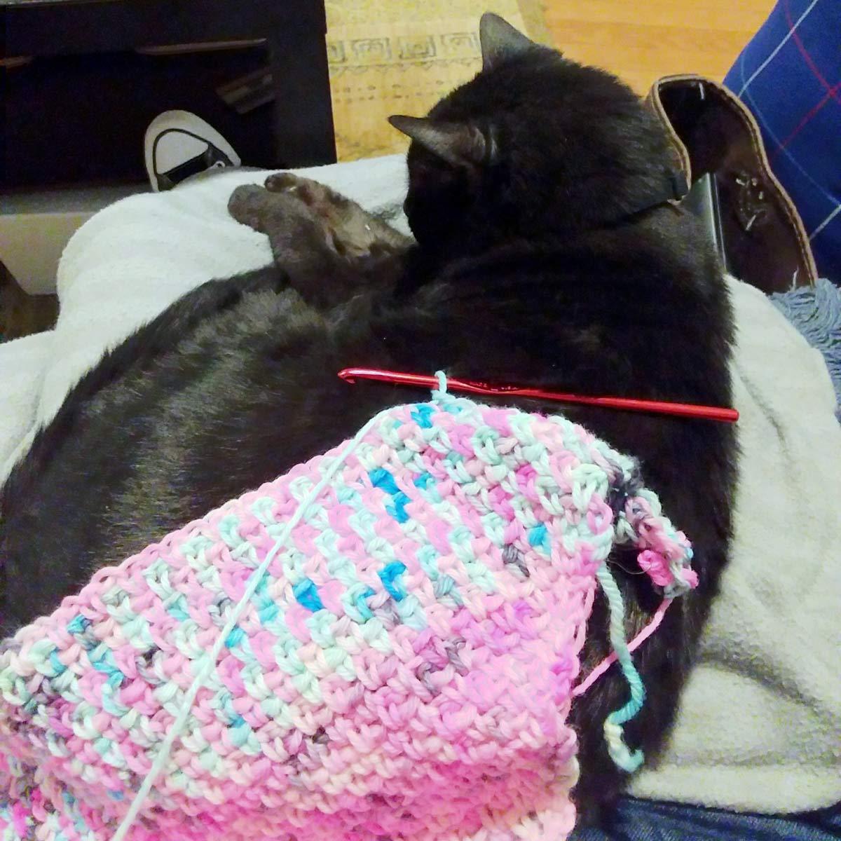 Black cat sitting on person's lap on a grey fleece blanket. On the cat's back is a crochet project in progress.
