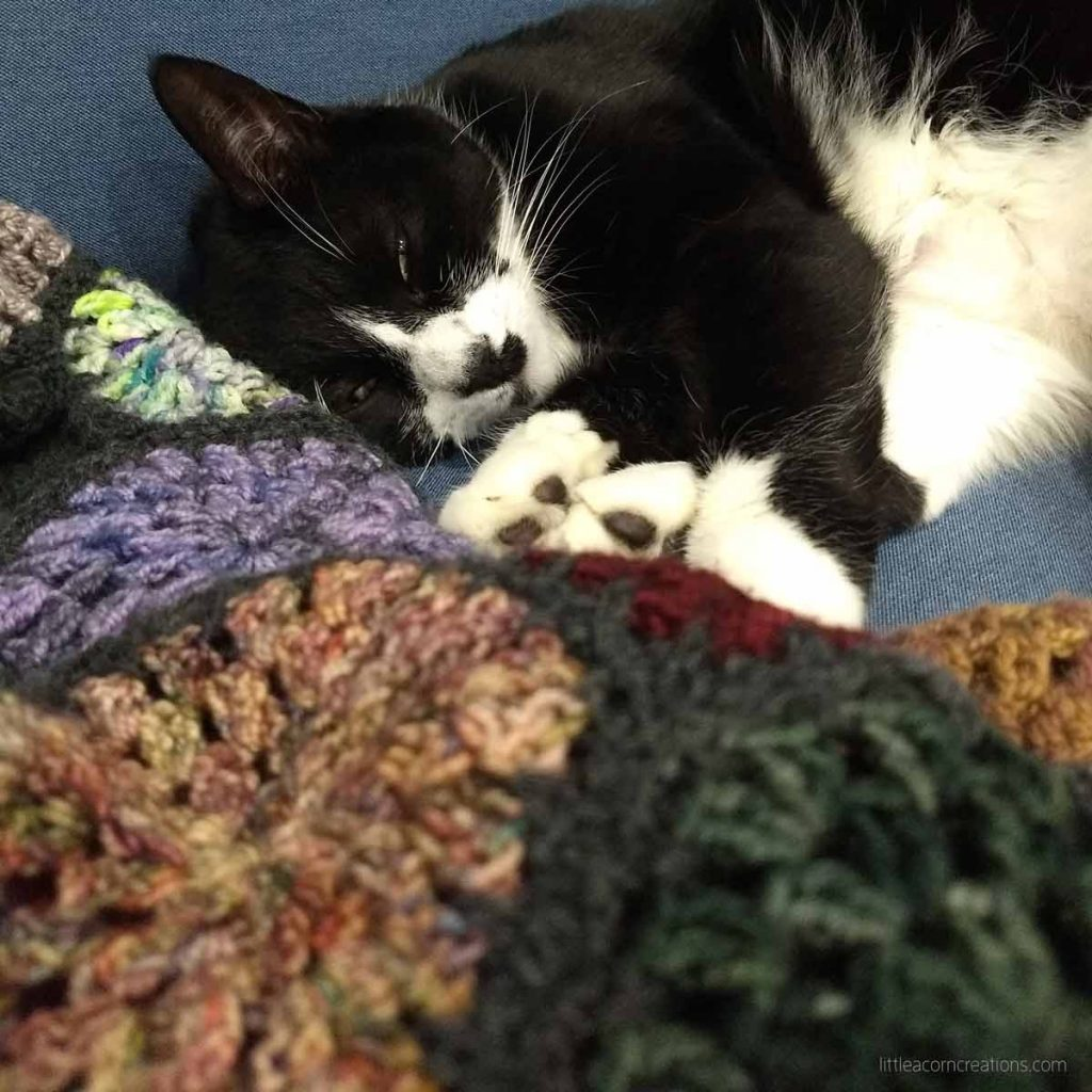 Tuxedo cat napping near a crocheted blanket